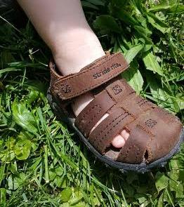 grass shoe