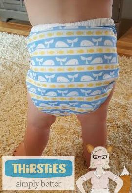 thirsties pocket cloth diaper