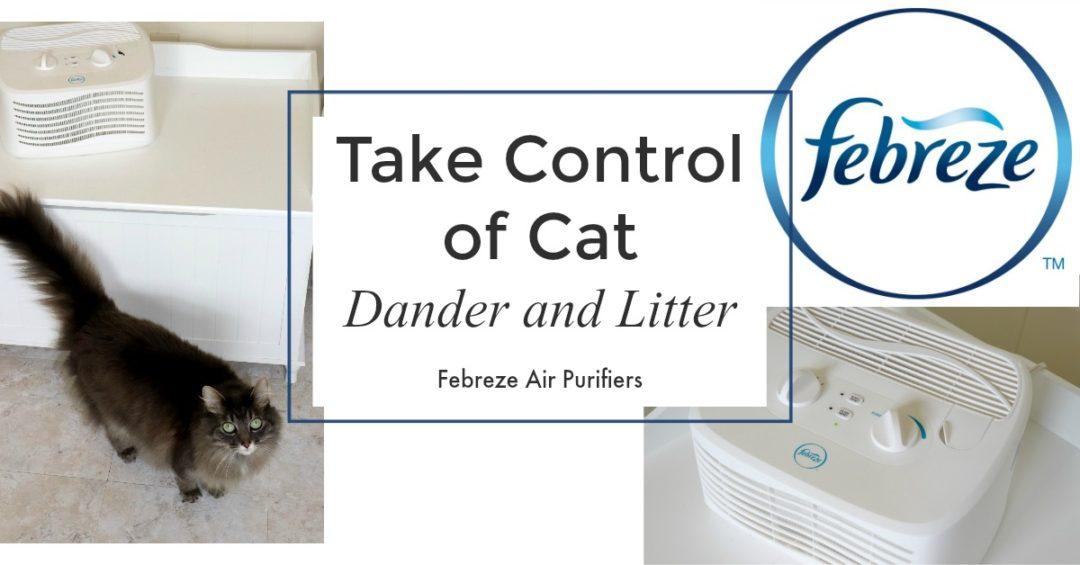 Cat Litter That Traps Scent