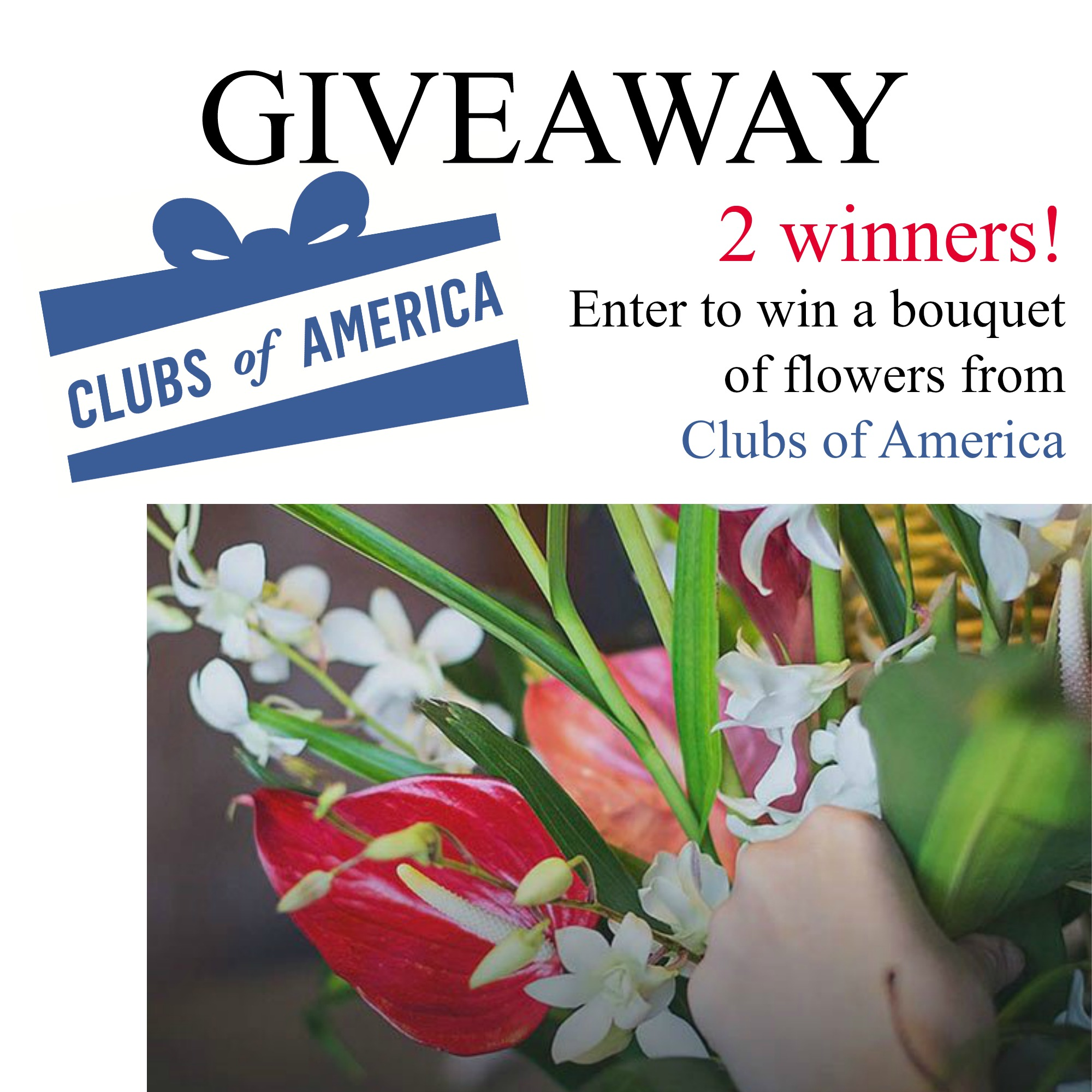 Flower of the month giveaway